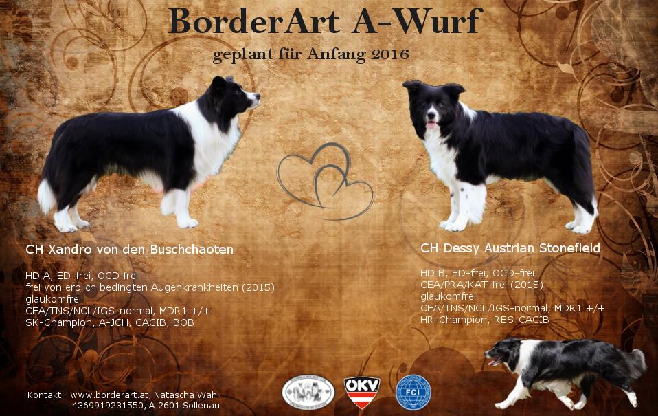 Wurfankündigung_Borderart