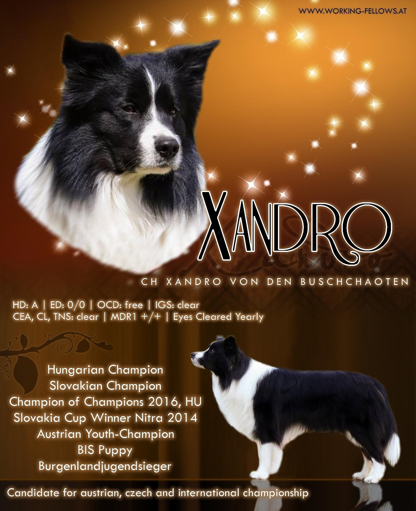 xandroadd(1)